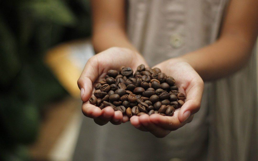 Fantásticas simpatias com café