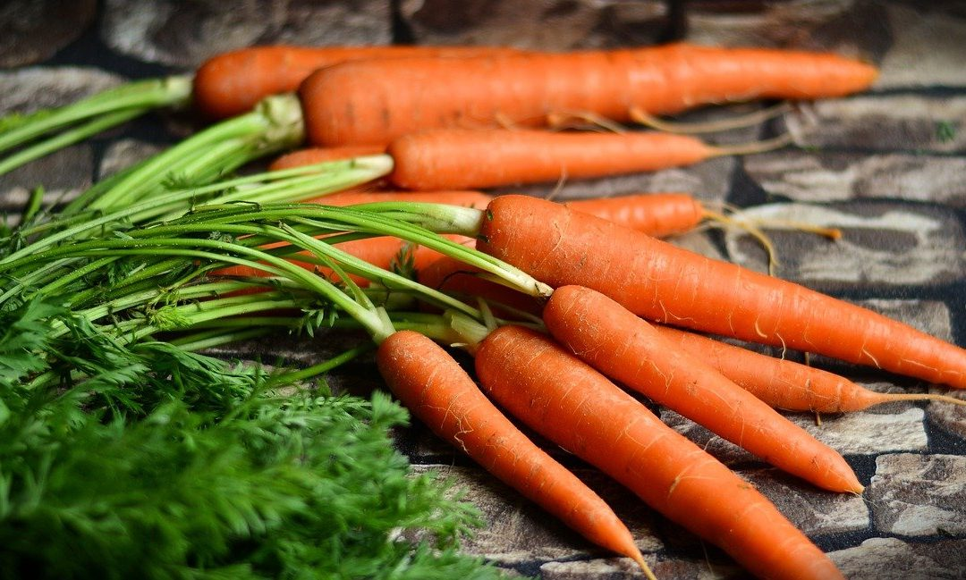 Ramas de cenoura receitas e dicas