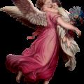 Salmo do anjo da guarda